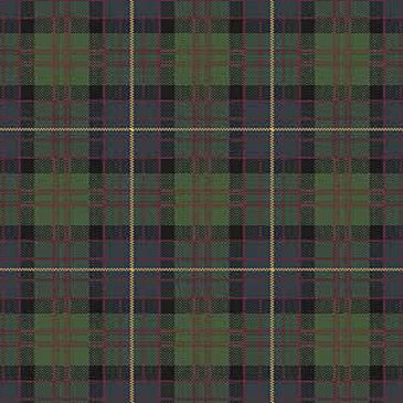 Cameron Of Erracht Tartan Sample